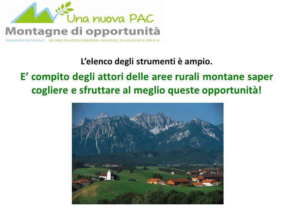 L'elenco degli strumenti è ampio. E' compito degli attori delle aree rurali montane saper cogliere e sfruttare al meglio queste opportunità!