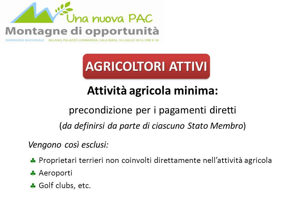 AGRICOLTORI ATTIVI Attività agricola minima: precondizione per i pagamenti diretti (da definirsi da parte di ciascuno Stato Membro) Vengono così esclu