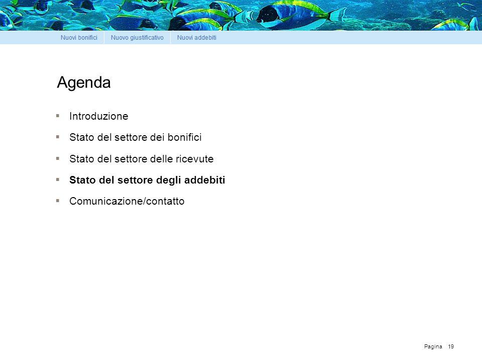 Pagina Agenda  Introduzione  Stato del settore dei bonifici  Stato del settore delle ricevute  Stato del settore degli addebiti  Comunicazione/contatto 19
