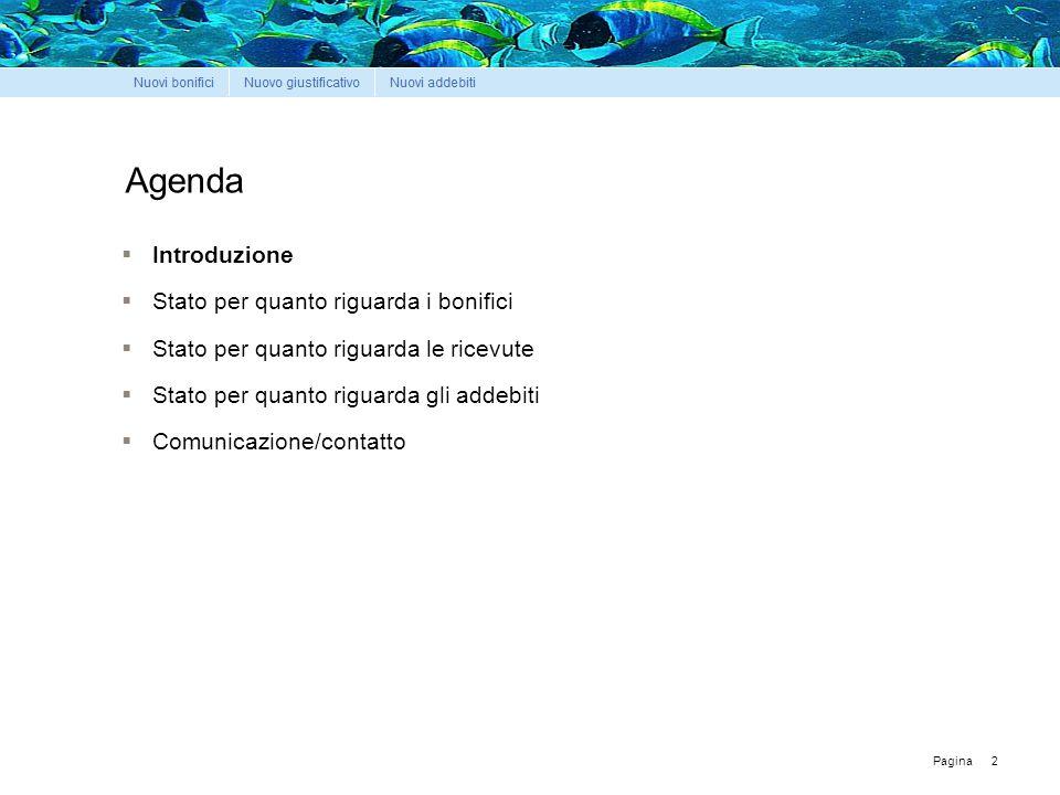 Pagina 2 Agenda  Introduzione  Stato per quanto riguarda i bonifici  Stato per quanto riguarda le ricevute  Stato per quanto riguarda gli addebiti  Comunicazione/contatto
