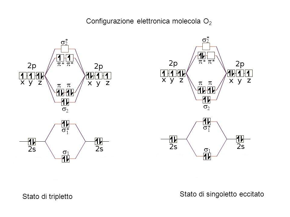 Configurazione elettronica molecola O 2 Stato di tripletto Stato di singoletto eccitato