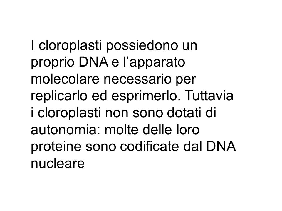 I cloroplasti possiedono un proprio DNA e l'apparato molecolare necessario per replicarlo ed esprimerlo. Tuttavia i cloroplasti non sono dotati di aut