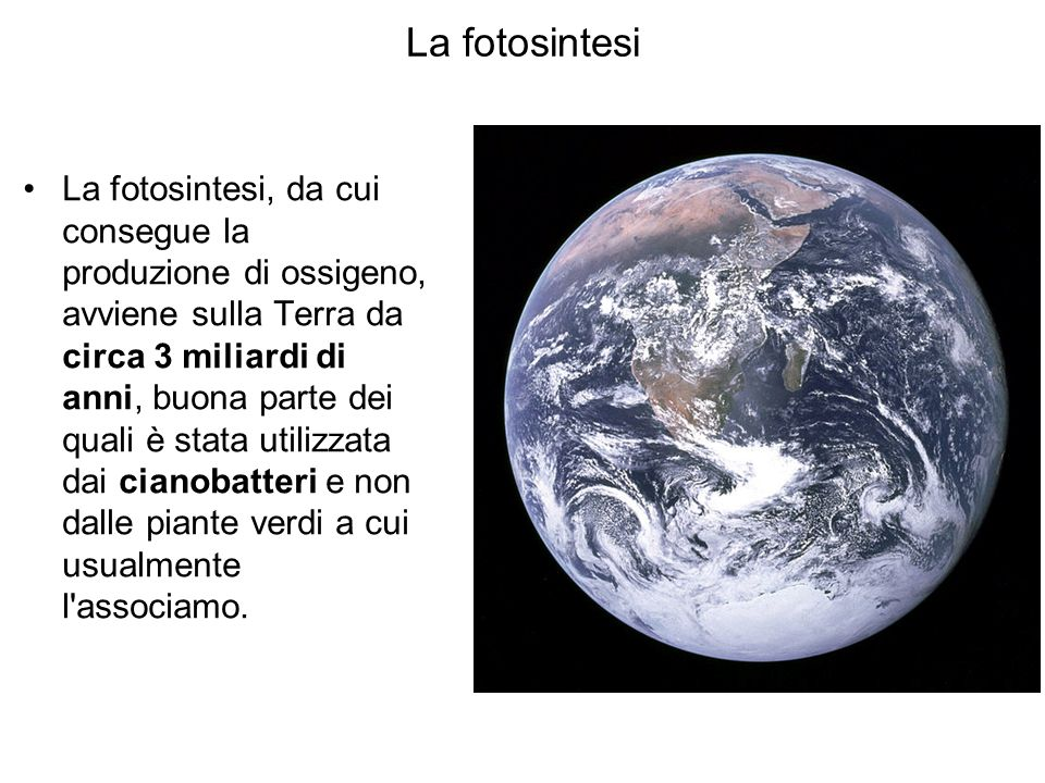 La fotosintesi La fotosintesi, da cui consegue la produzione di ossigeno, avviene sulla Terra da circa 3 miliardi di anni, buona parte dei quali è sta