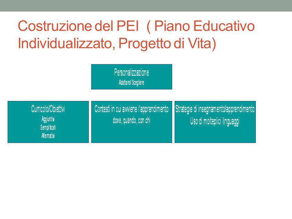 Costruzione del PEI ( Piano Educativo Individualizzato, Progetto di Vita)