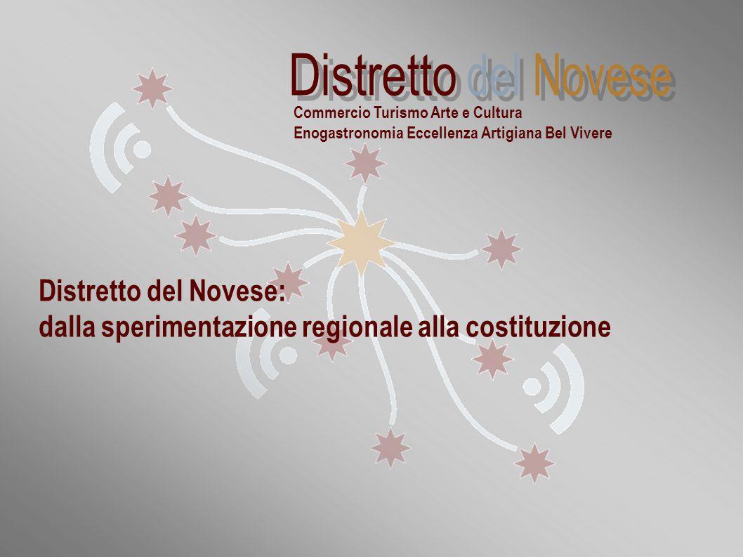 """""""Distretti commerciali sperimentali della Regione Piemonte: la realtà novese"""" Distretto del Novese: dalla sperimentazione regionale alla costituzione"""