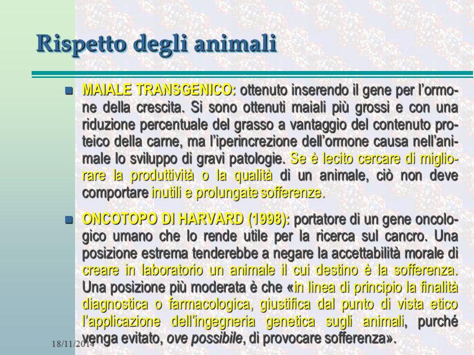 18/11/2014 Rispetto degli animali n MAIALE TRANSGENICO: ottenuto inserendo il gene per l'ormo- ne della crescita. Si sono ottenuti maiali più grossi e