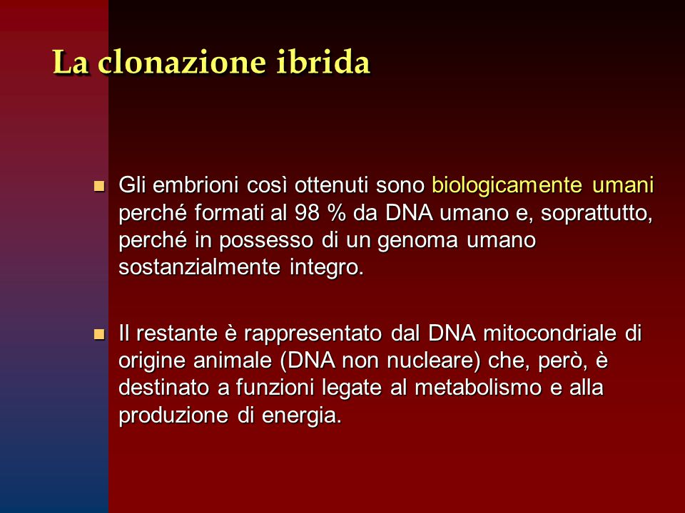 La clonazione ibrida n Gli embrioni così ottenuti sono biologicamente umani perché formati al 98 % da DNA umano e, soprattutto, perché in possesso di