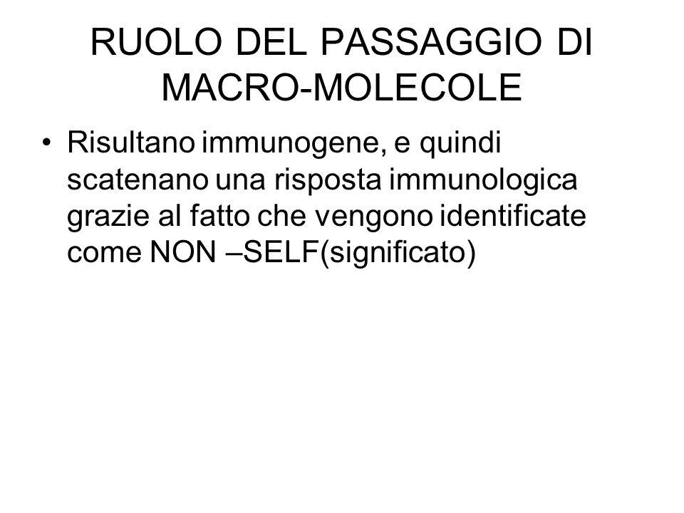 RUOLO DEL PASSAGGIO DI MACRO-MOLECOLE Risultano immunogene, e quindi scatenano una risposta immunologica grazie al fatto che vengono identificate come NON –SELF(significato)