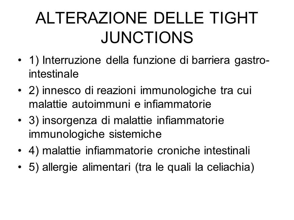 ALTERAZIONE DELLE TIGHT JUNCTIONS 1) Interruzione della funzione di barriera gastro- intestinale 2) innesco di reazioni immunologiche tra cui malattie autoimmuni e infiammatorie 3) insorgenza di malattie infiammatorie immunologiche sistemiche 4) malattie infiammatorie croniche intestinali 5) allergie alimentari (tra le quali la celiachia)
