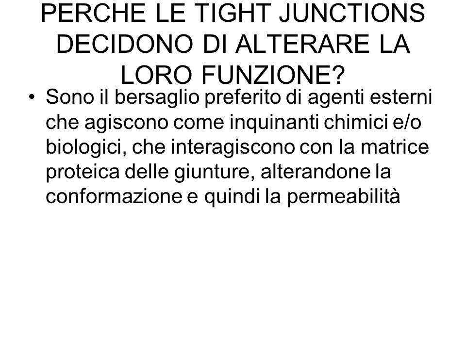PERCHE LE TIGHT JUNCTIONS DECIDONO DI ALTERARE LA LORO FUNZIONE.