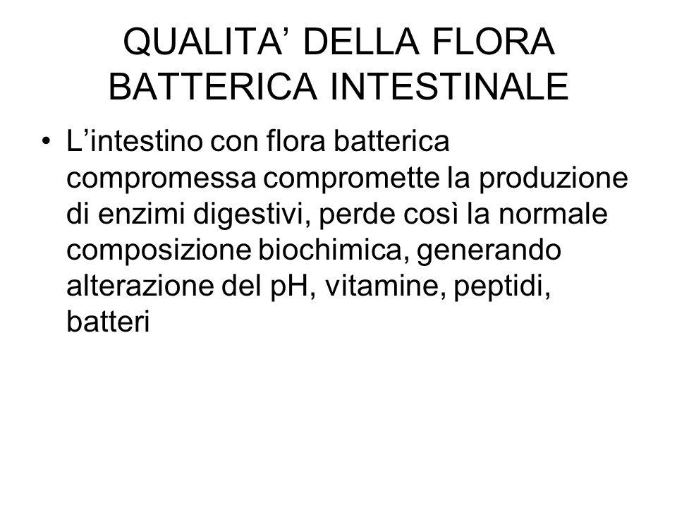 QUALITA' DELLA FLORA BATTERICA INTESTINALE L'intestino con flora batterica compromessa compromette la produzione di enzimi digestivi, perde così la normale composizione biochimica, generando alterazione del pH, vitamine, peptidi, batteri