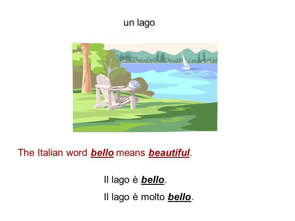 un'isola The Italian word anche means also. La Sicilia è un'isola. La Sicilia è anche una regione dell'Italia. La Sardegna è anche una regione. La Sar