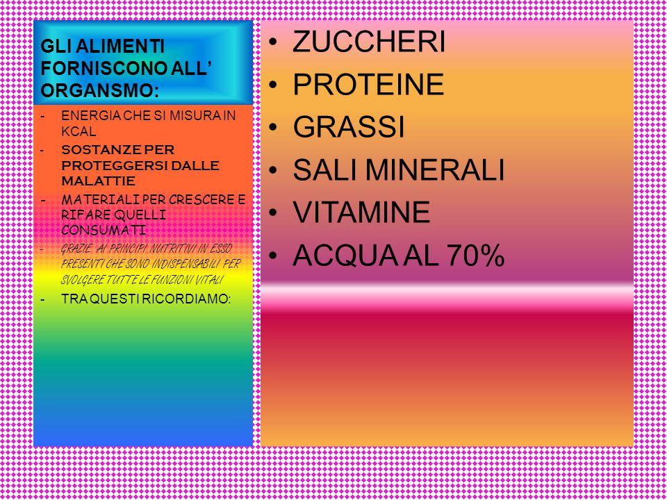 Composizione chimica media del corpo umano Acqua 60 % Protidi 18 % Lipidi 17% Sali minerali 4 % Glucidi 1 % Vitamine tracce