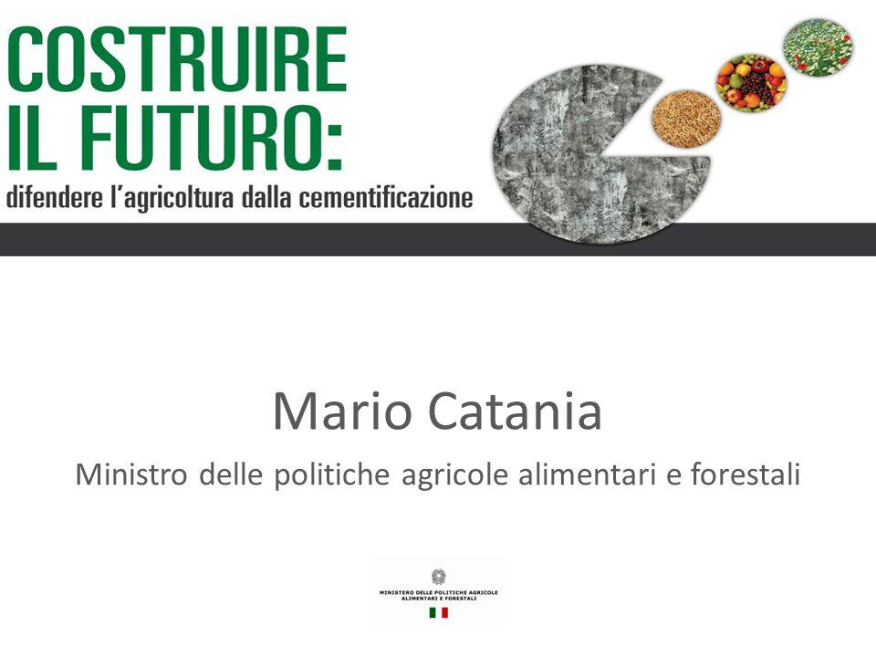 Mario Catania Ministro delle politiche agricole alimentari e forestali