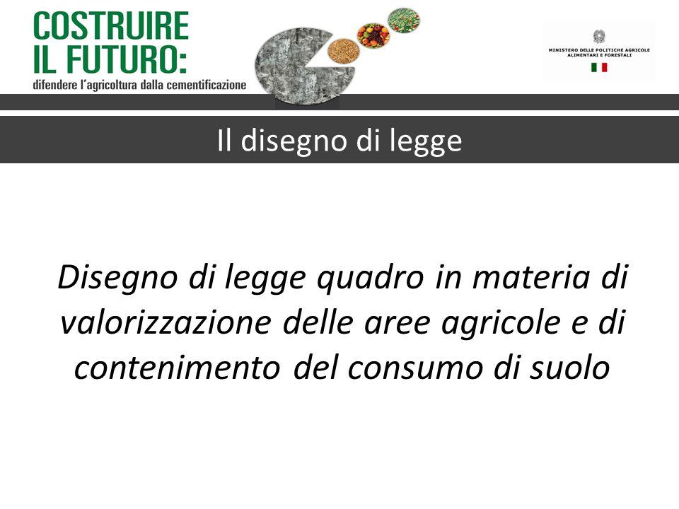 Il disegno di legge Disegno di legge quadro in materia di valorizzazione delle aree agricole e di contenimento del consumo di suolo