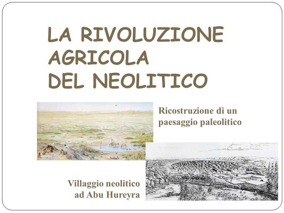 LA RIVOLUZIONE AGRICOLA DEL NEOLITICO Villaggio neolitico ad Abu Hureyra Ricostruzione di un paesaggio paleolitico