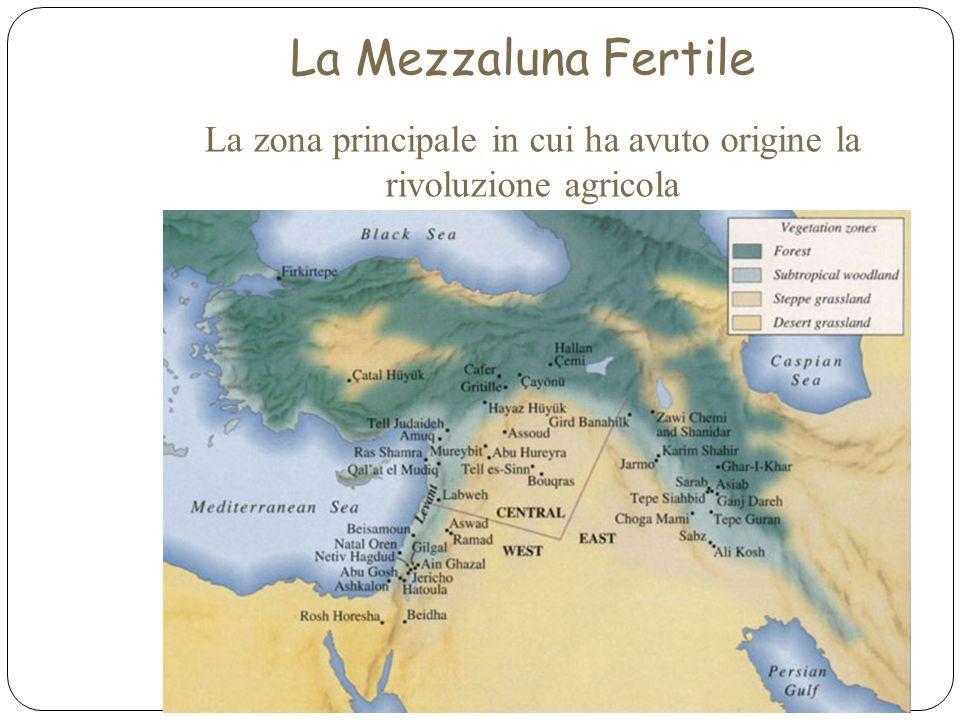 La Mezzaluna Fertile La zona principale in cui ha avuto origine la rivoluzione agricola