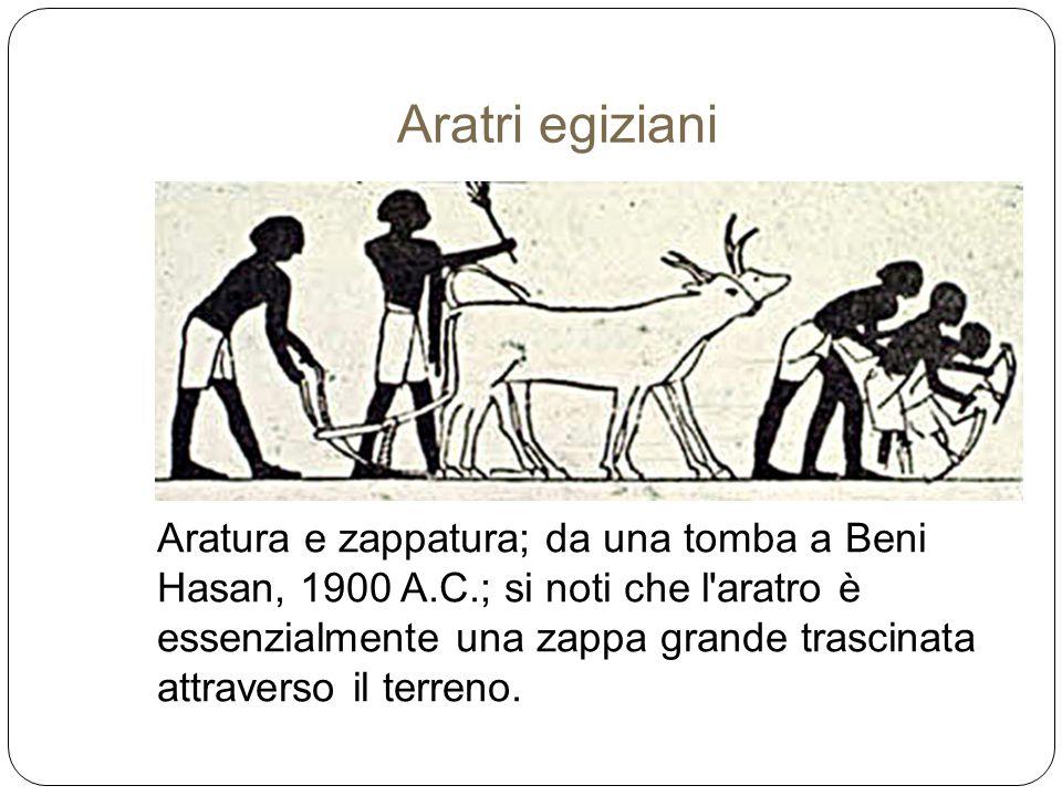 Aratri egiziani Aratura e zappatura; da una tomba a Beni Hasan, 1900 A.C.; si noti che l'aratro è essenzialmente una zappa grande trascinata attravers