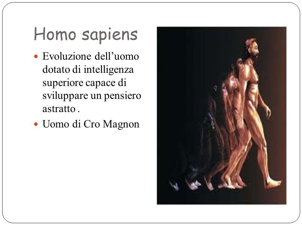 Homo sapiens Evoluzione dell'uomo dotato di intelligenza superiore capace di sviluppare un pensiero astratto. Uomo di Cro Magnon