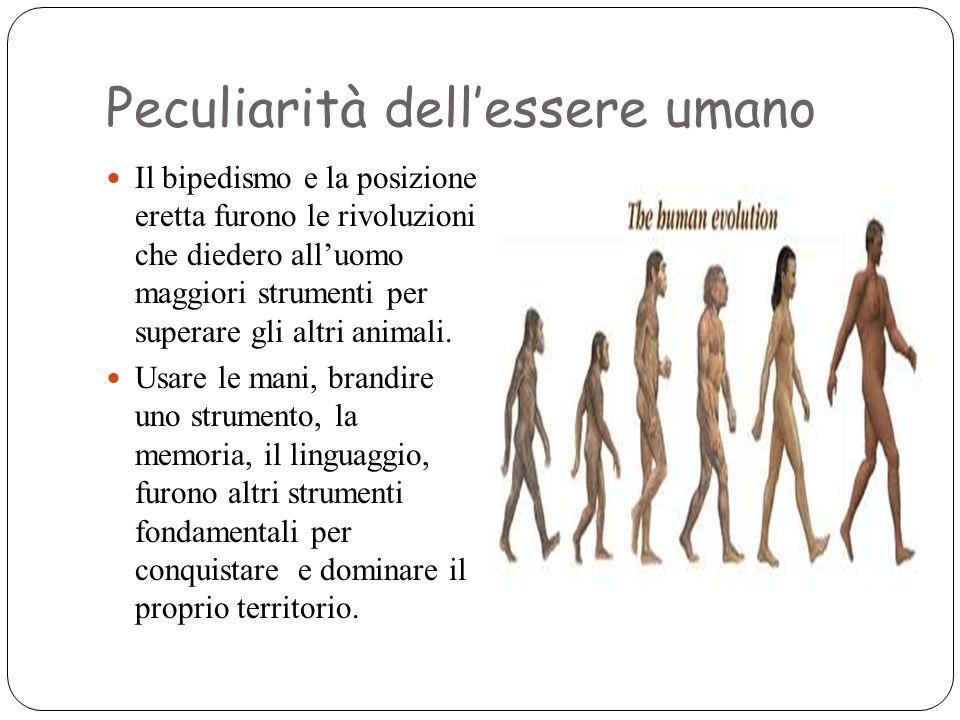 Peculiarità dell'essere umano Il bipedismo e la posizione eretta furono le rivoluzioni che diedero all'uomo maggiori strumenti per superare gli altri