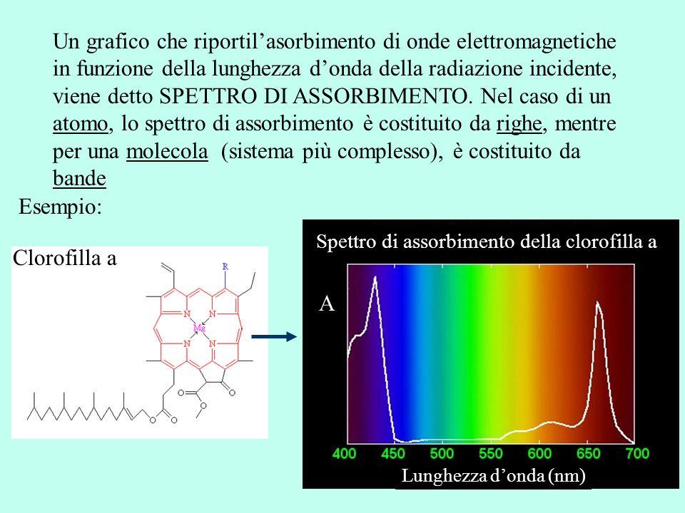 Un grafico che riportil'asorbimento di onde elettromagnetiche in funzione della lunghezza d'onda della radiazione incidente, viene detto SPETTRO DI AS