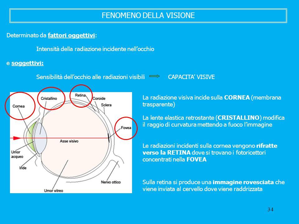 34 FENOMENO DELLA VISIONE Determinato da fattori oggettivi: Intensità della radiazione incidente nell'occhio e soggettivi: Sensibilità dell'occhio all