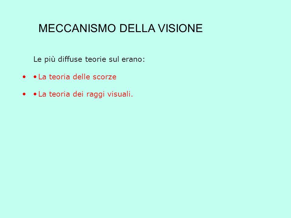 LA TEORIA DELLE SCORZE Per la filosofia antica il senso della vista, come gli altri sensi, era fondato sul contatto che genera modificazione ed in tal senso Leucippo di Mileto ne era un significativo sostenitore.
