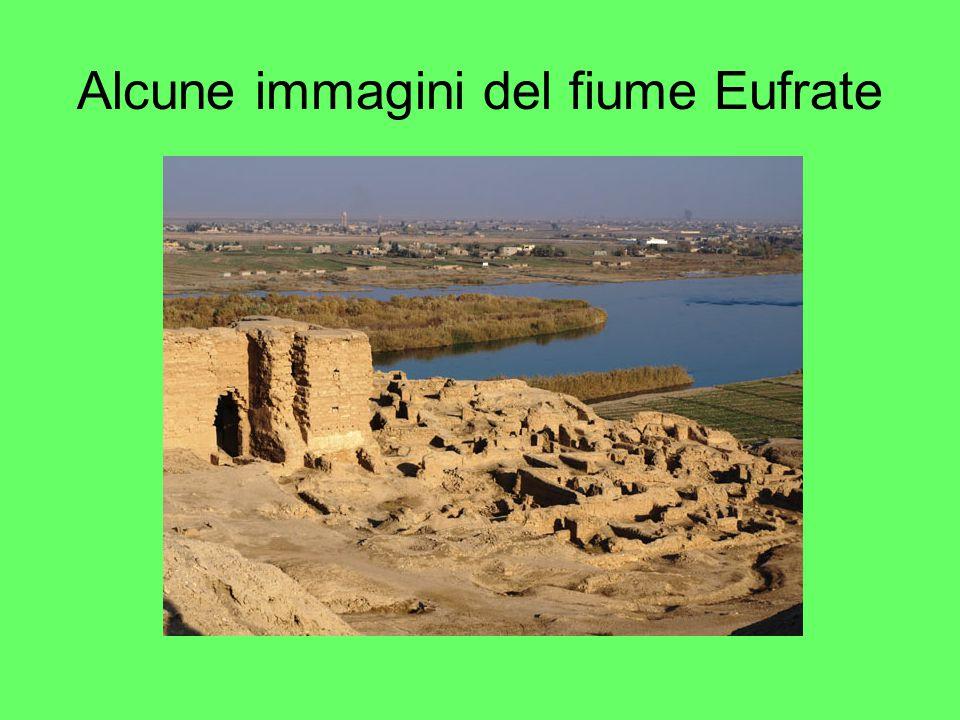 Alcune immagini del fiume Eufrate