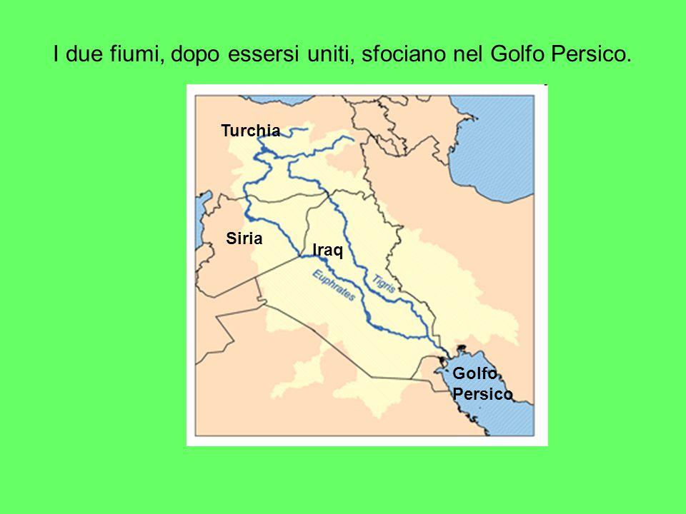 I due fiumi, dopo essersi uniti, sfociano nel Golfo Persico. Turchia Siria Iraq Golfo Persico