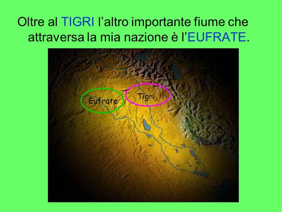Oltre al TIGRI l'altro importante fiume che attraversa la mia nazione è l'EUFRATE. Tigri Eufrate