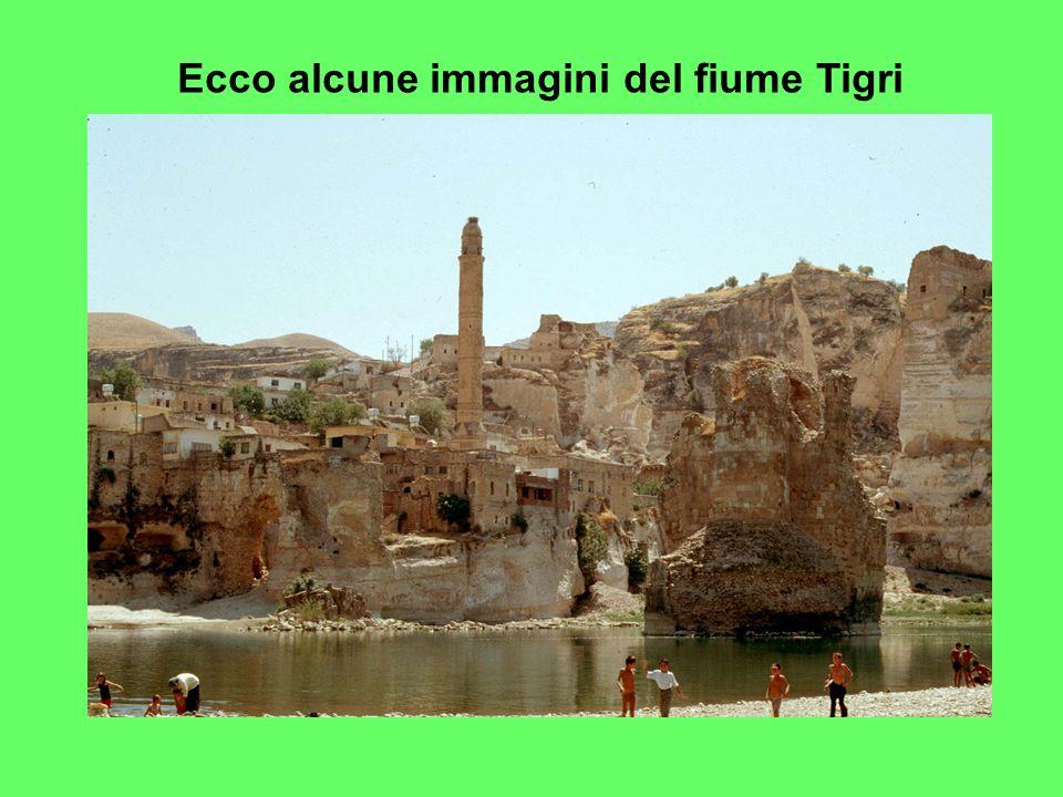 Ecco alcune immagini del fiume Tigri