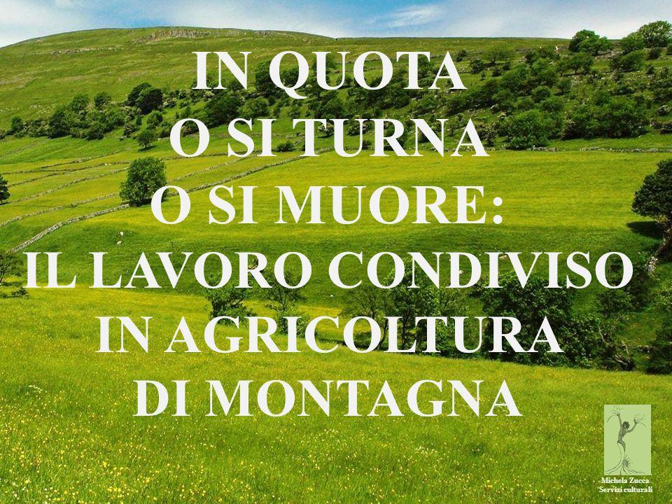 Michela Zucca Servizi culturali IN QUOTA O SI TURNA O SI MUORE: IL LAVORO CONDIVISO IN AGRICOLTURA DI MONTAGNA