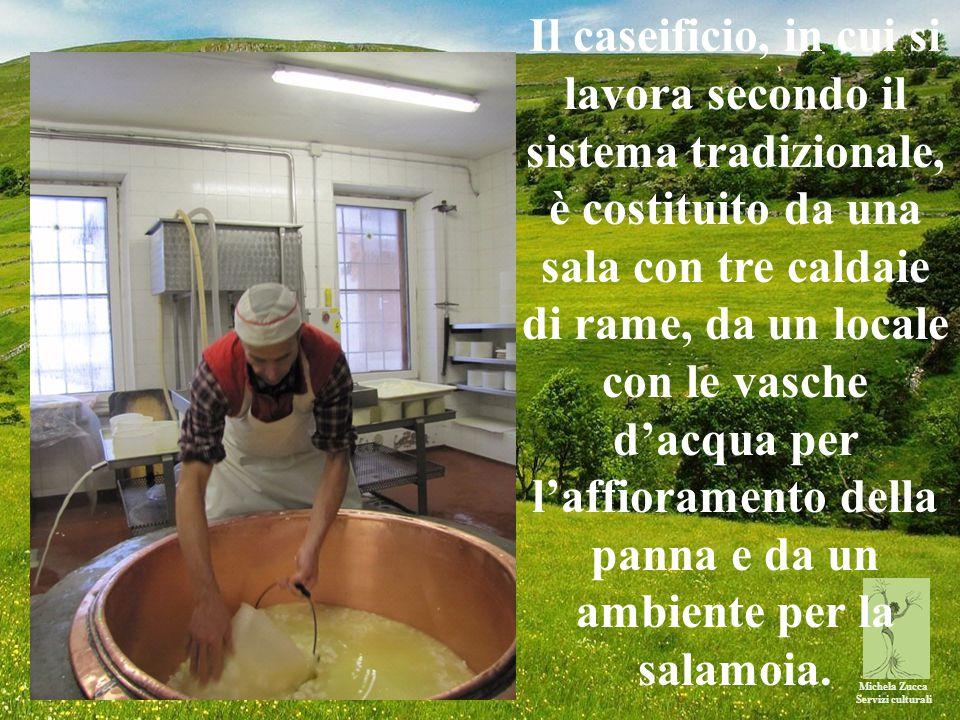 Michela Zucca Servizi culturali Il caseificio, in cui si lavora secondo il sistema tradizionale, è costituito da una sala con tre caldaie di rame, da un locale con le vasche d'acqua per l'affioramento della panna e da un ambiente per la salamoia.