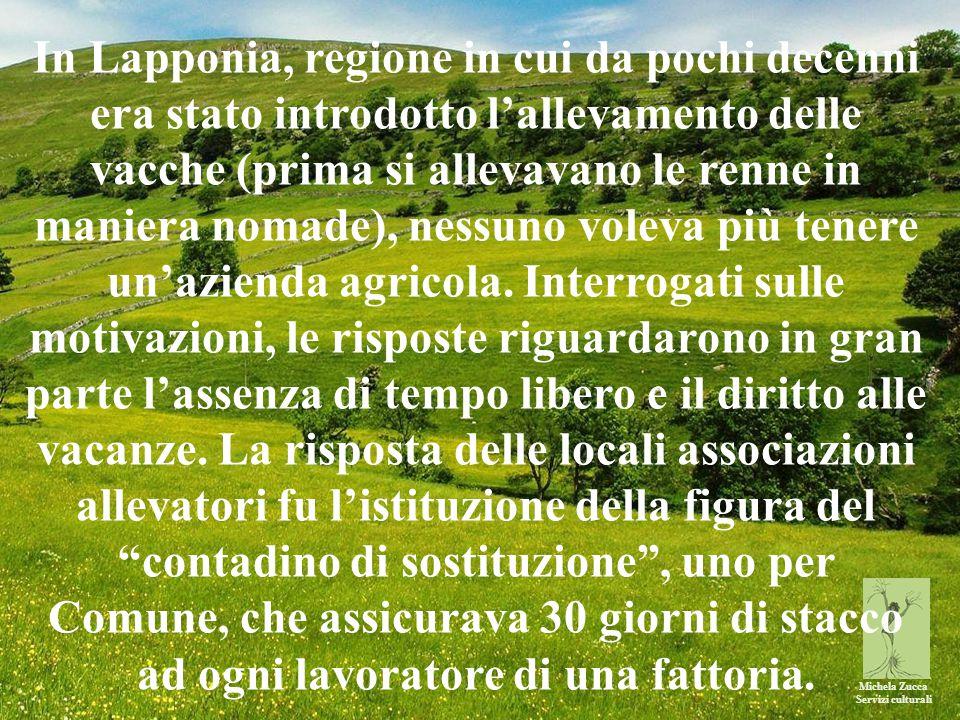 Michela Zucca Servizi culturali Il problema fu risolto.