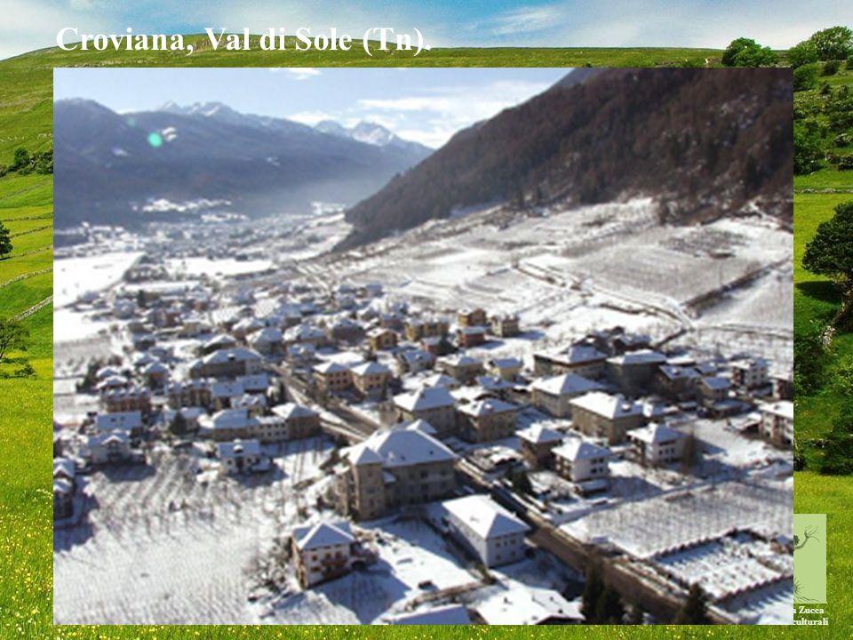 Michela Zucca Servizi culturali Croviana, Val di Sole (Tn).