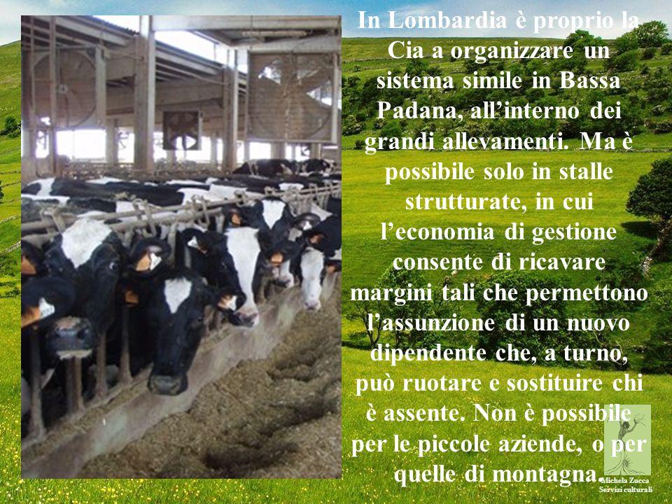 Michela Zucca Servizi culturali In Lombardia è proprio la Cia a organizzare un sistema simile in Bassa Padana, all'interno dei grandi allevamenti.