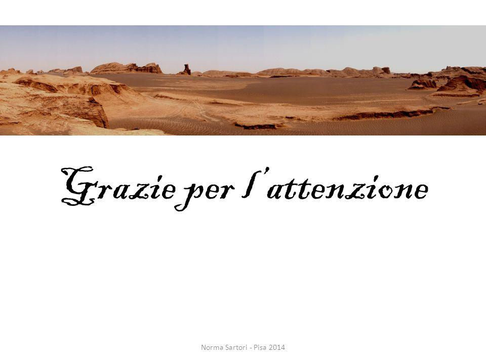 Grazie per l'attenzione Norma Sartori - Pisa 2014