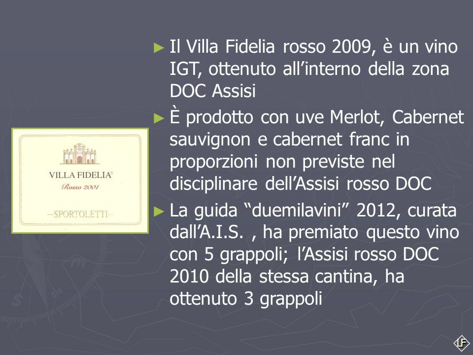 """LF ► ► Anche nella nostra regione esistono degli esempi simili: ► Il """"Cervaro della Sala"""" Antinori, è un vino IGT Umbria, ottenuto all'interno della z"""