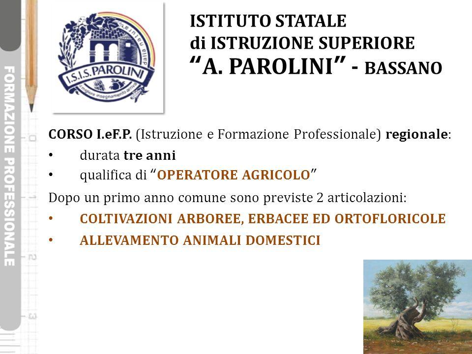 """ISTITUTO STATALE di ISTRUZIONE SUPERIORE """"A. PAROLINI"""" - BASSANO CORSO I.eF.P. (Istruzione e Formazione Professionale) regionale: durata tre anni qual"""