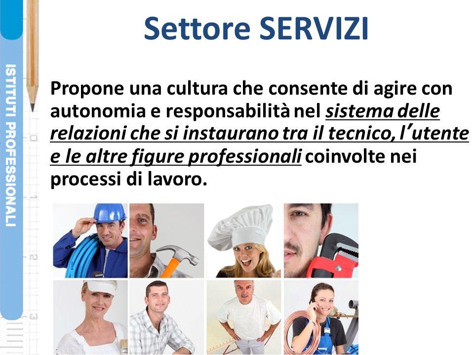 Settore SERVIZI Propone una cultura che consente di agire con autonomia e responsabilità nel sistema delle relazioni che si instaurano tra il tecnico,