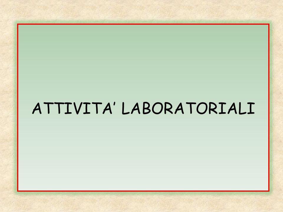 ATTIVITA' LABORATORIALI