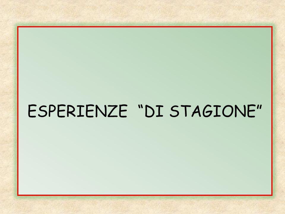"""ESPERIENZE """"DI STAGIONE"""""""