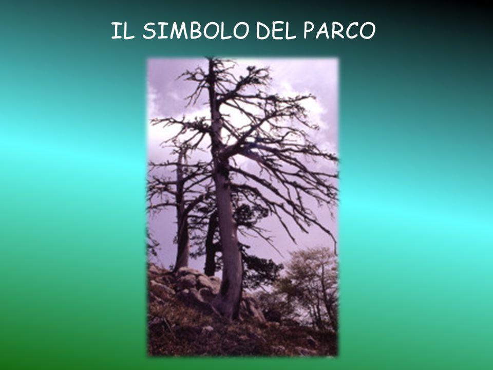IL SIMBOLO DEL PARCO
