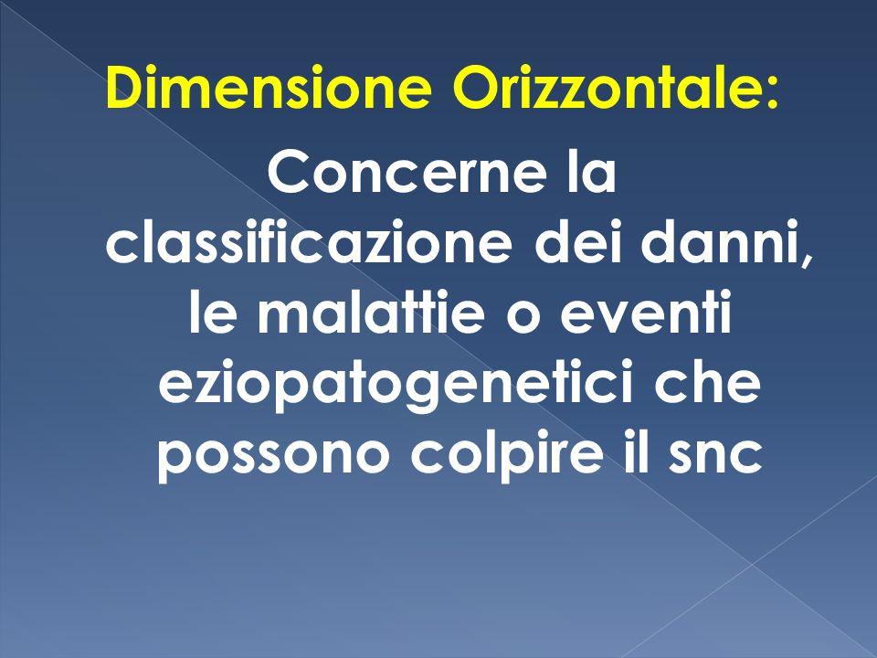 Dimensione Orizzontale: Concerne la classificazione dei danni, le malattie o eventi eziopatogenetici che possono colpire il snc