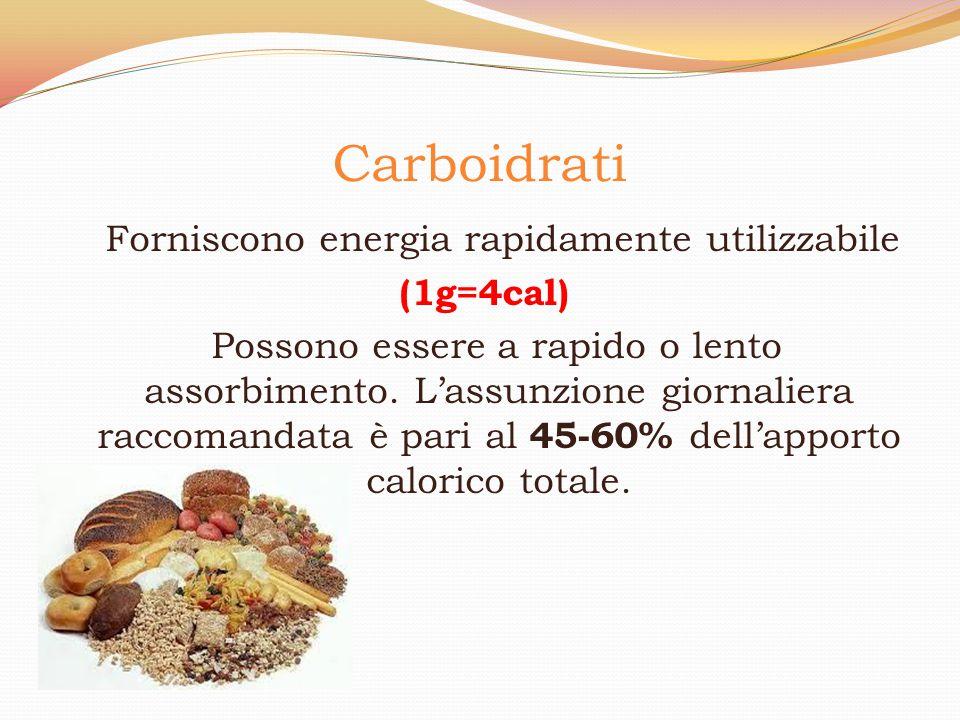 Carboidrati Forniscono energia rapidamente utilizzabile (1g=4cal) Possono essere a rapido o lento assorbimento. L'assunzione giornaliera raccomandata