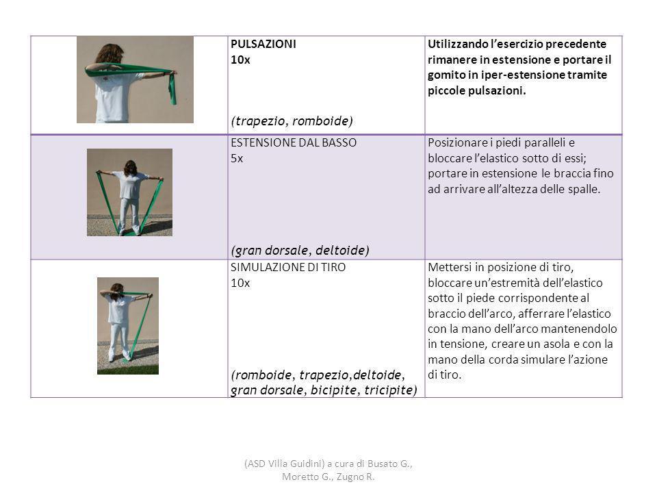 PULSAZIONI 10x (trapezio, romboide) Utilizzando l'esercizio precedente rimanere in estensione e portare il gomito in iper-estensione tramite piccole pulsazioni.
