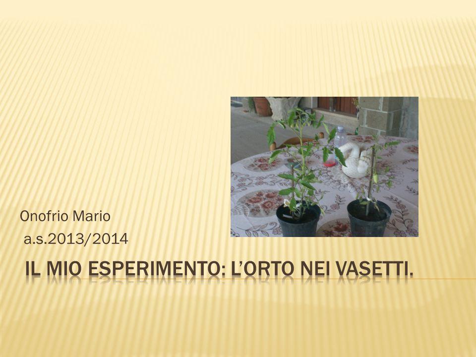 Onofrio Mario a.s.2013/2014