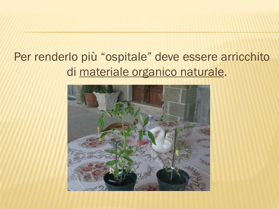 Per renderlo più ospitale deve essere arricchito di materiale organico naturale.