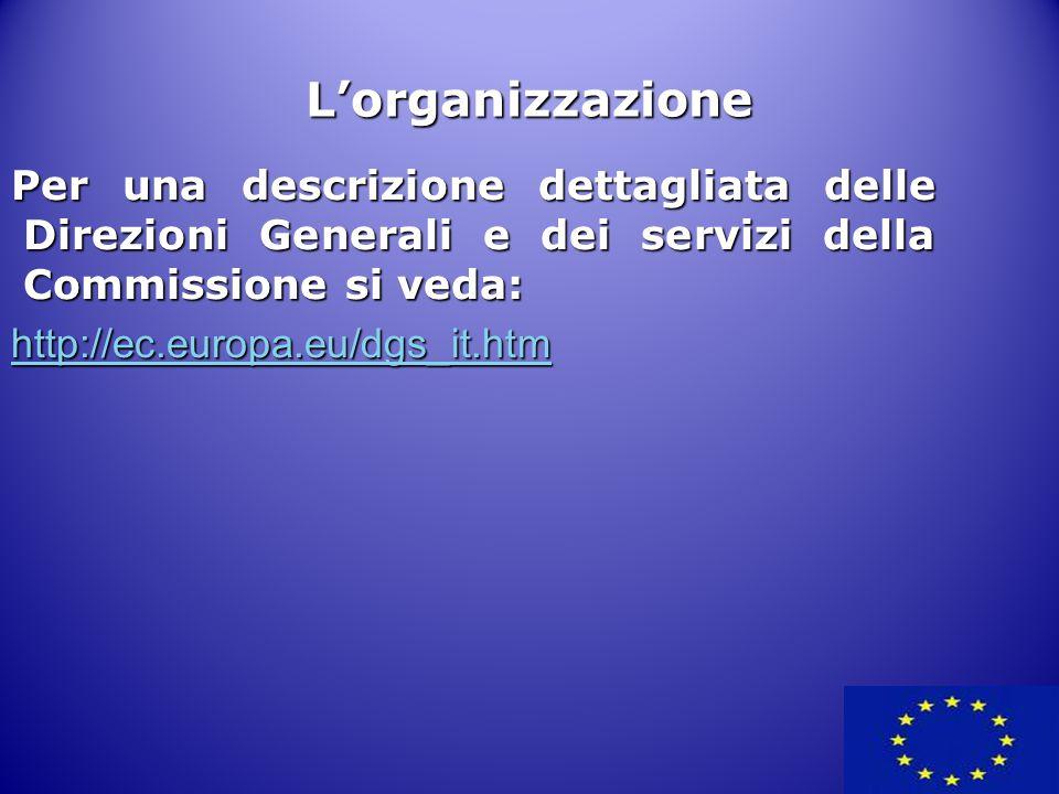 Per una descrizione dettagliata delle Direzioni Generali e dei servizi della Commissione si veda: http://ec.europa.eu/dgs_it.htm L'organizzazione