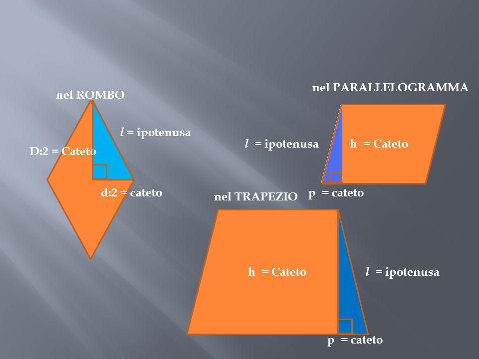 l = ipotenusa nel PARALLELOGRAMMA p = cateto l = ipotenusa nel ROMBO D:2 = Cateto h = Cateto d:2 = cateto h = Cateto l = ipotenusa p = cateto nel TRAP